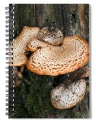 Bracket Family Spiral Notebook