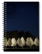 Bradford Pear Trees, Tennessee, Usa Spiral Notebook