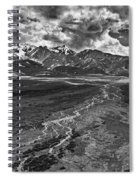 Braided River Spiral Notebook