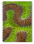 Brain Coral Spiral Notebook