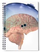 Brain In Skateboard Helmet Spiral Notebook
