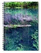Branch And Reflections At Alley Spring State Park Spiral Notebook