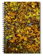 Branches Of Gold Spiral Notebook