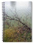 Branchs Over The Waters Edge 2001 Spiral Notebook