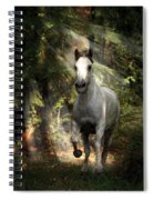 Breaking Dawn Gallop Spiral Notebook