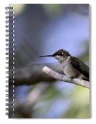 Breaktime Spiral Notebook