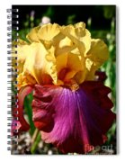 Bright Iris Spiral Notebook