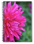 Bright Pink Dahlia Spiral Notebook