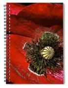 Bright Red Poppy Spiral Notebook
