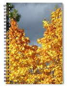 Brilliance Before The Storm Spiral Notebook
