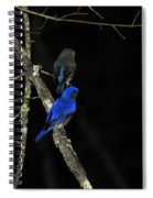 Brilliant Blues Spiral Notebook