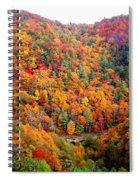 Brilliant Color Trees Spiral Notebook