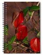 Brilliant Greenbrier 1 Spiral Notebook