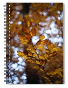 Brilliant Leaves Spiral Notebook