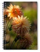 Brilliant Sunlight Spiral Notebook