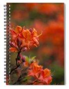 Brilliantly Rouge Spiral Notebook