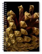 Close Up Of Pinecone Spiral Notebook