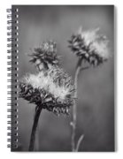 Bristle Thistle In Black And White Spiral Notebook