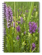 Broad-leaved Marsh Orchid Dactylorhiza Spiral Notebook