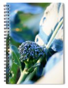 Broccoli Sprout Spiral Notebook