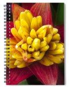 Bromiliad Blossom Spiral Notebook