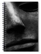Bronze Mask Spiral Notebook