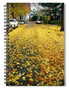 Brooklyn New York Spiral Notebook