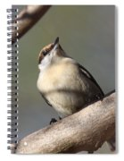 Brown And Tan Spiral Notebook