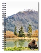 Brown Bear 207 Spiral Notebook