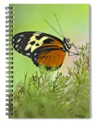 Brown Is Beautiful Spiral Notebook