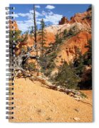 Bryce Canyon Forest Spiral Notebook