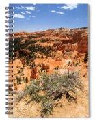 Bryce Canyon Overlook Spiral Notebook