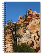 Bryce Canyon Santa Clause Spiral Notebook