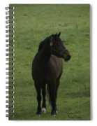 Bryzgalov Spiral Notebook