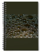 Bubbles Of Steam Black Spiral Notebook