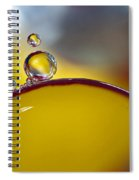 Bubbles Vi Spiral Notebook