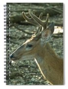 Buck 9246 4037 2 Spiral Notebook