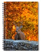 Buck Digital Painting - 01 Spiral Notebook