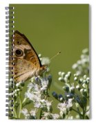 Buckeye Butterfly And Lesser Snakeroot Wildflowers Spiral Notebook