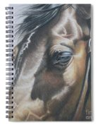 Buckles And Belts In Colored Pencil Spiral Notebook