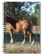 Bud Wiser Spiral Notebook