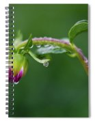 Bud With Drops Spiral Notebook