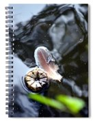 Buddies Spiral Notebook