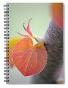Budding Heart Spiral Notebook