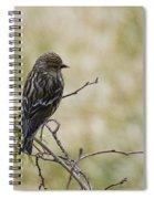 Budding Spring Song Spiral Notebook