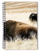 Buff And Friend 2 Spiral Notebook