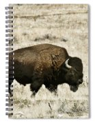 Buff Profile Spiral Notebook
