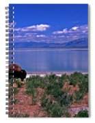 Buffalo And The Great Salt Lake Spiral Notebook