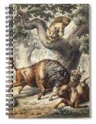 Buffalo & Lynx Spiral Notebook