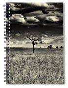 Buffalo Park Horizon Spiral Notebook